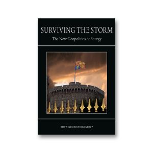 Surviving the Storm cover