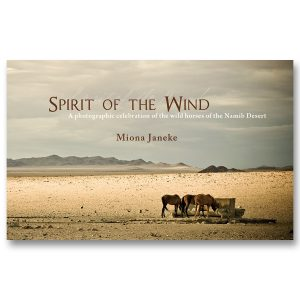 Spirit of the Wind cover