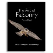 The Art of Falconry cover
